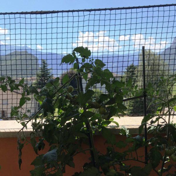 PE-Netz Auf Mauer